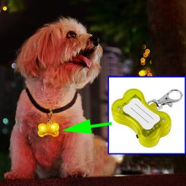 Dog LED Collar Pendant